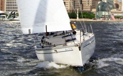 Sailing at Sea 3