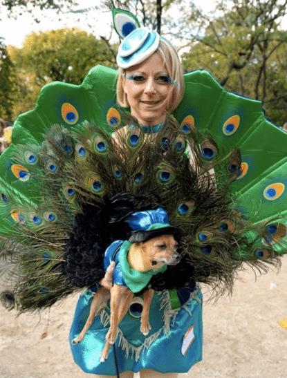 Dog Costume Parade 2