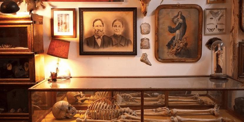 Morbid Anatomy 1