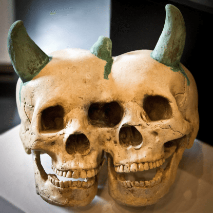 Morbid Anatomy 3