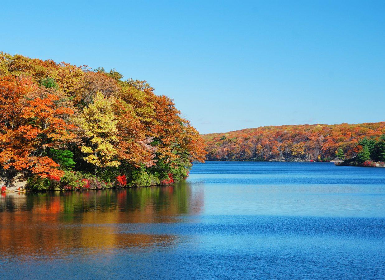 Fall Foliage Cruise  Hudson River